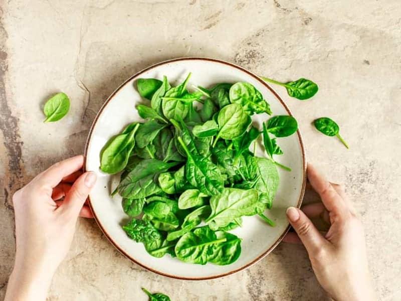Spinat essen Gründe