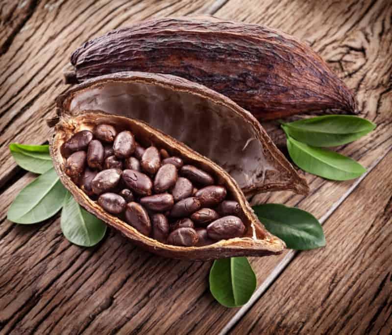 Geschichte der Schokolade Ursprung