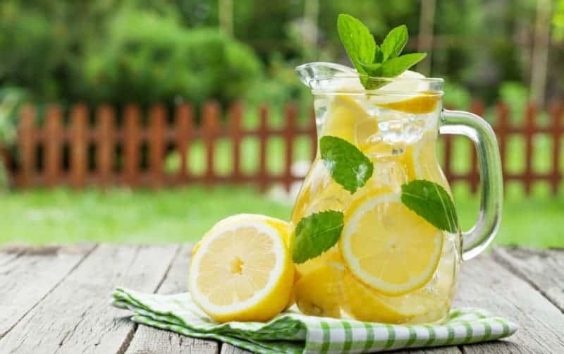 Zitronenwasser Immunsystem stärkend