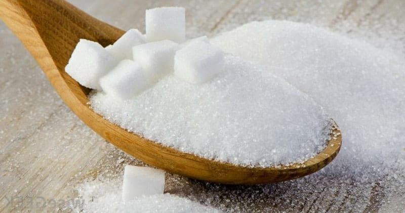 ohne Zucker leben